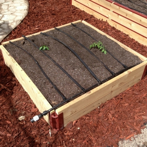 2 X12 Cedar Raised Garden Bed 4 4 Kit Grow It Now